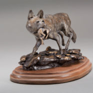 Coyote in bronze