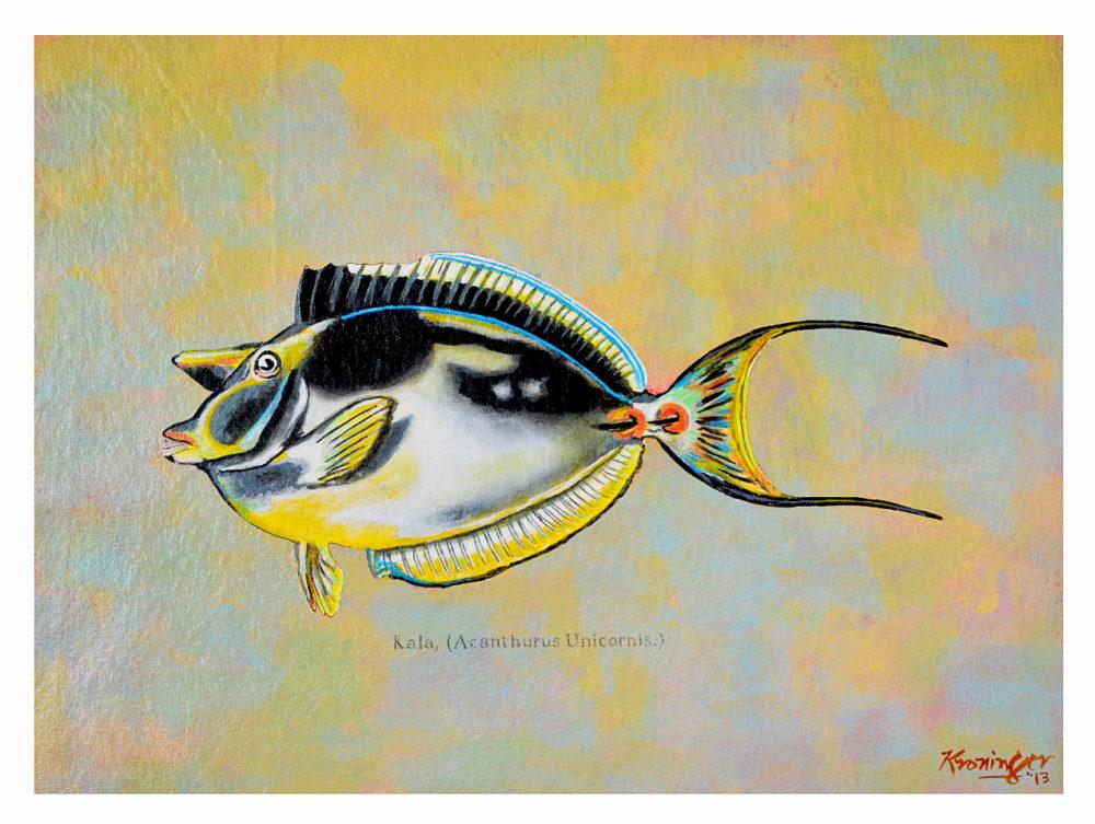 Kala reef fish series painting by artist Rick Kroninger | Felder Gallery