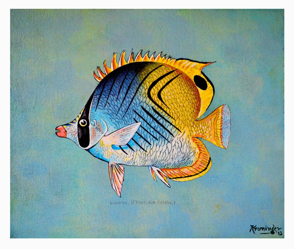 Lauhau reef fish series painting by artist Rick Kroninger | Felder Gallery