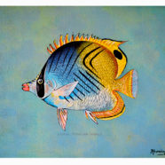Lauhau reef fish series painting by artist Rick Kroninger | Felder Gallery