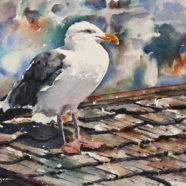 Seagull watercolor painting by artist Ric Dentinger | Felder Gallery