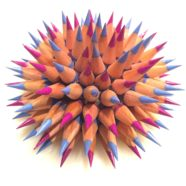 sea urchin art