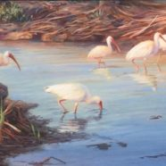 Guy Morrow Wildlife Art