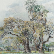 Rockport Trees Watercolor