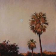 Palms at Dusk