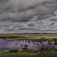 Coastal Marsh, Cloudy Day