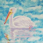 White Pelican on Cerulean Blue