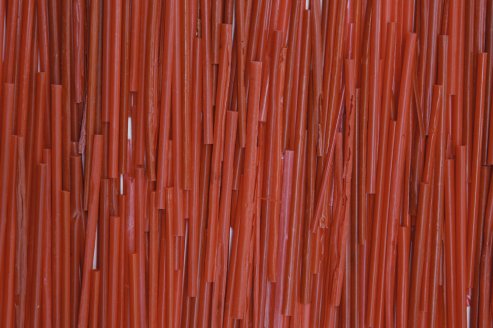 photograph of red plastic straws by shelia rogers | Felder Gallery