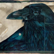 ink drawing of black crow by tim mcmeans | Felder Gallery